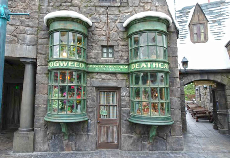 universal studios hollywood harry potter tienda