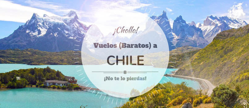 chile con flylevel