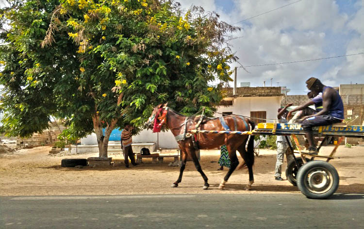 transporte en senegal